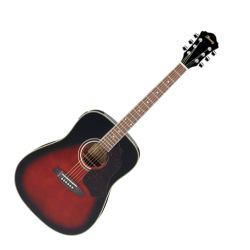 Ibanez SGT120E Acoustic Electric Guitar