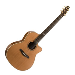 Seagull 041558 Artist Mosaic CW Folk w/ LR Baggs Element Acoustic Electric 6 String Guitar w/Deluxe TRIC Case