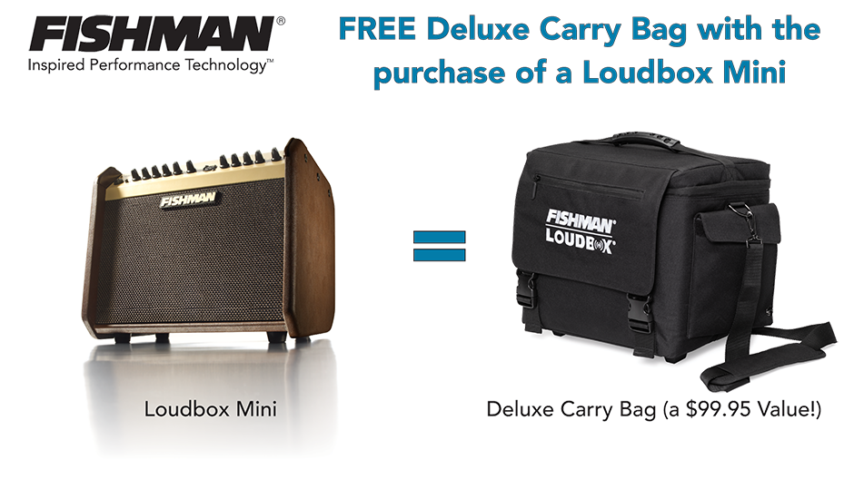 FREE Deluxe Carrying Bag with Loudbox Mini
