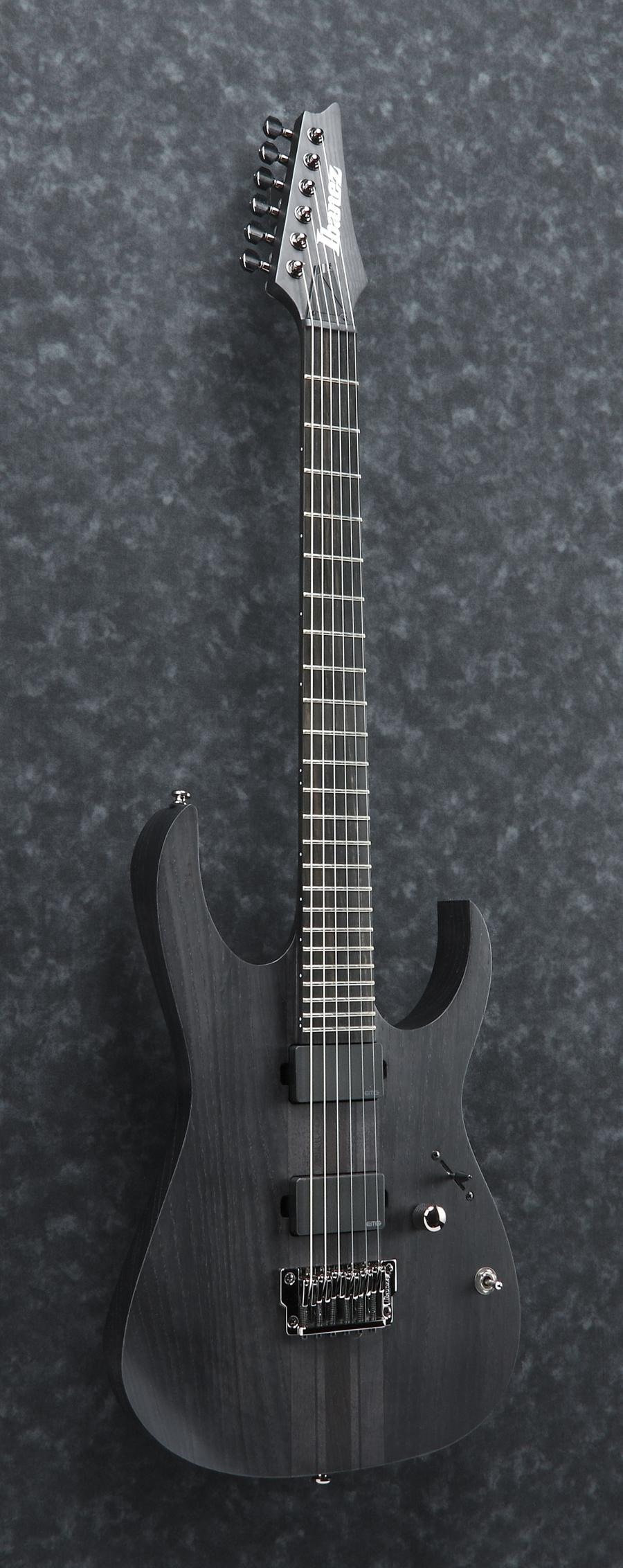 Ibanez RGIT20FE-TGF RG Iron Label Series 6 String Electric Guitar in ...