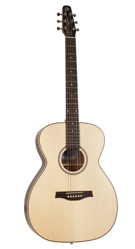 Seagull 040421  Maritime Concert Hall SWS SG QIT Acoustic Electric 6 String Guitar