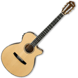 Ibanez AEG10NII-NT AEG Series 6 String Acoustic Electric Guitar in Natural High Gloss with Nylon Strings (discontinued clearance)