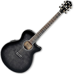 Ibanez AEG24II-TGB AEG Series 6 String Acoustic Electric Guitar in Transparent Grey High Gloss