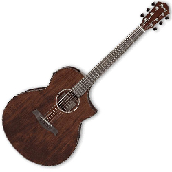 Ibanez AEW40CD-NT AEW Series 6 String Acoustic Electric Guitar in Natural High Gloss (discontinued clearance)