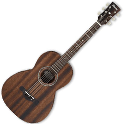 Ibanez AVN2-OPN Artwood Vintage Series 6 String Acoustic Guitar in Open Pore Natural (Discontinued Clearance)