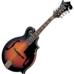 Alabama ALM50 S F-Style Mandolin with deluxe headstock