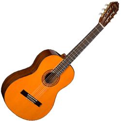 Washburn C5 Classical Series 6 String Acoustic Guitar