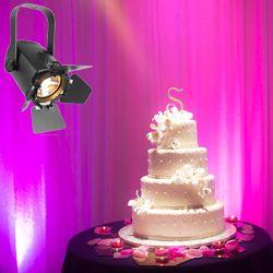 Chauvet DJ EVE TF-20 Compact Energy Efficient Soft Edged LED Accent Luminaire