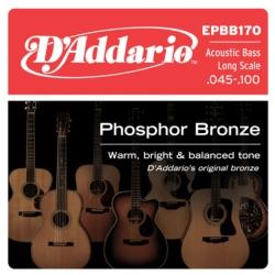 D'Addario EPBB170 Phosphor Bronze Acoustic Bass Strings 45-100