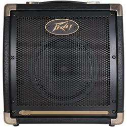 Peavey 03599640 ECOUSTIC E20 20W Acoustic Amplifier