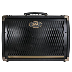 Peavey 03599680 ECOUSTIC E208 2 Channel Acoustic Amplifier