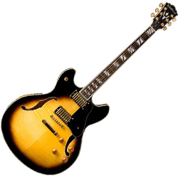 Washburn HB35TSK Hollowbody Electric Guitar in Tobacco Sunburst