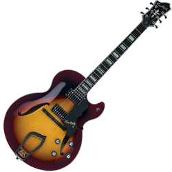 Hagstrom HJ800-VSB 6 String Hollow Body HJ 800 Model Electric Guitar in Vintage Sunburst