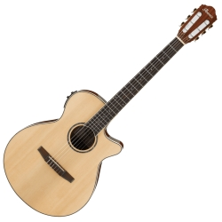 Ibanez AEG10NII-NT AEG Series 6 String RH Acoustic Electric Classical Guitar-Natural High Gloss
