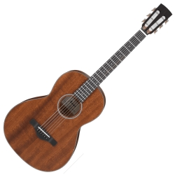 Ibanez AVN9-OPN Artwood Vintage Series 6 String RH Acoustic Guitar-Open Pore Natural