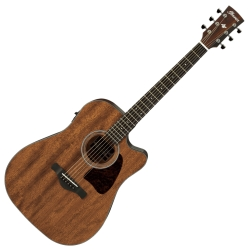 Ibanez AW54CE-OPN Artwood Series 6 String RH Acoustic Electric Guitar-Open Pore Natural