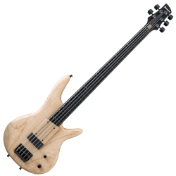 Ibanez GWB1005-NF Gary Willis Signature 5 String RH Fretless Electric Bass with Case-Natural Flat