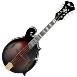 Ibanez M522S-DVS-d F-Style Mandolin-Dark Violin Sunburst (discontinued clearance)  (Prior Year Model)