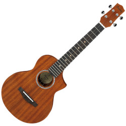 Ibanez UEWT5OPN Acoustic Tenor Ukulele w/ gig bag - Open Pore Natural