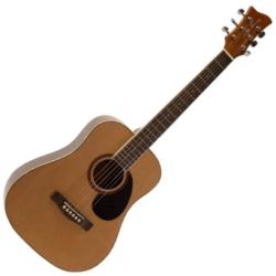 Jay Turser JTA523N 3/4 Size 6-String RH Dreadnought Acoustic Guitar-Natural