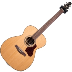 Seagull 045372 Coastline CH Momentum 6 String RH Acoustic Electric Guitar HG (Discontinued Clearance)