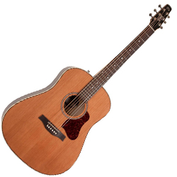 Seagull 042494 Coastline Momentum HG 6 String Acoustic Electric Guitar