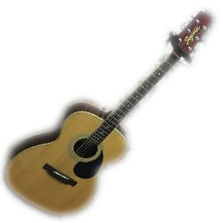 Segovia F07G-N 6 String Acoustic Guitar in Natural Gloss