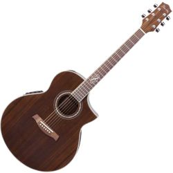 Ibanez EW20WNENT EW Series Acoustic Electric 6 String Guitar (DEMO - CLEARANCE)