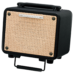 Ibanez T15-N-d 15 Watt Troubadour Acoustic Guitar Combo Amplifier (discontinued clearance)