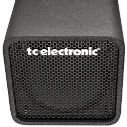 fender inch amp bass com cabinet neo watt amazon bassman dp