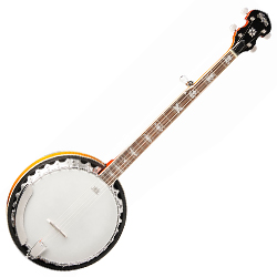 Washburn B10-WSH 5 String Banjo with Mahogany Body and Fancy Floral Inlay (discontinued clearance)