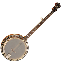 Washburn B120K 5 String Banjo 125th Anniversary (discontinued clearance)