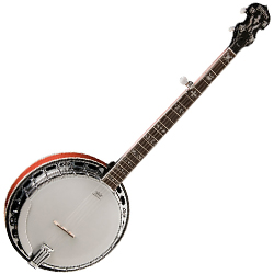 Washburn B16K 5 String Banjo in Maple with Hardshell Case (discontinued clearance)