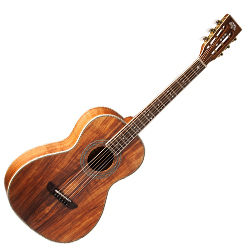 Washburn WP55NS Parlor Series 6 String Acoustic Guitar (discontinued clearance)