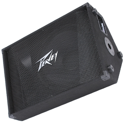 Peavey 00570670 PV 15M Two Way Loudspeaker Monitor