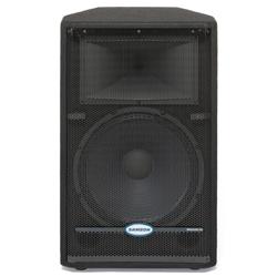 Samson RS15HD 600W Peak 15 Inch Passive PA Speaker Enclosure
