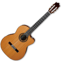 Ibanez G300CENT 6 String Classical Acoustic Electric Guitar in Natural Finish (discontinued clearance)