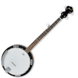 Ibanez B50-d 5 String Banjo with a Rosewood Fretboard (discontinued clearance)  (Prior Year Model)