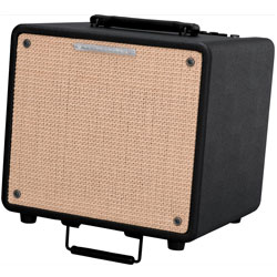 Ibanez T80-N-d 10 inch 80W Troubadour Acoustic Guitar Combo Amplifier (discontinued clearance)