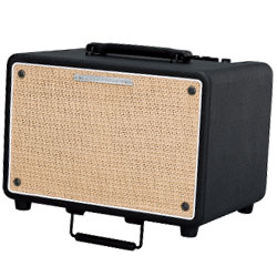 Ibanez T150S-N Troubadour Stereo 150W Acoustic Guitar Amplifier (discontinued clearance)