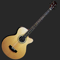 Jay Turser JTBD100 Acoustic Bass