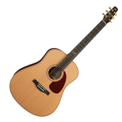 Seagull 041541 Artist Mosaic Element Acoustic Guitar 6 String with Tric Case