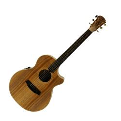 Cole Clark CCAN2EC-BLBL Grand Auditorium Guitar w/PU & Cutaway -Blackwood/Blackwood