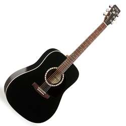 Art & Lutherie 013876 Cedar Black Acoustic 6 String Guitar (discontinued clearance)