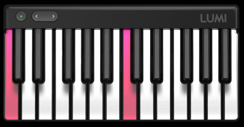 Roli LUMI-SE Lumi Studio Edition 24 Key Controller lumi-se Product Image 10