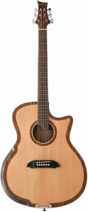 Riversong Guitars P 2P GA 6-String RH Electric Acoustic Guitar with Bag/Case p-2-p-ga Product Image 6