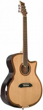 Riversong Guitars P 2P GA 6-String RH Electric Acoustic Guitar with Bag/Case p-2-p-ga Product Image 5