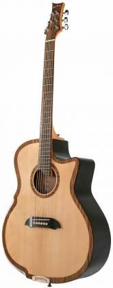 Riversong Guitars P 2P GA 6-String RH Electric Acoustic Guitar with Bag/Case p-2-p-ga Product Image 4
