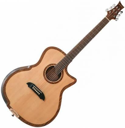 Riversong Guitars P 2P GA 6-String RH Electric Acoustic Guitar with Bag/Case p-2-p-ga Product Image