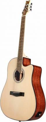 Riversong Guitars P 550CE-D 6-String RH Electric Acoustic Guitar p-550-ce-d Product Image 4